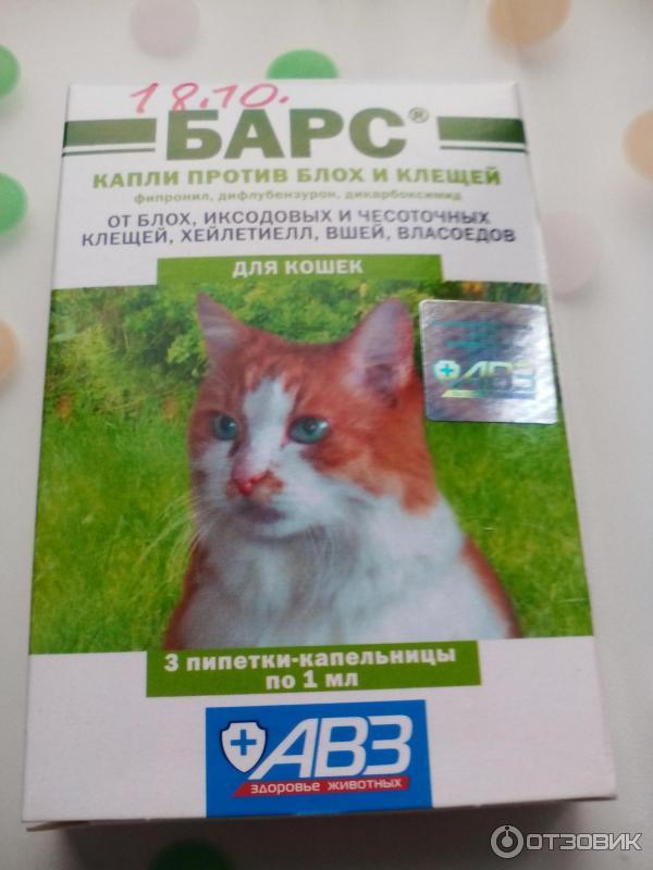 Капли барс для кошек (от блох и клещей): инструкция по применению для взрослых кошек и котят