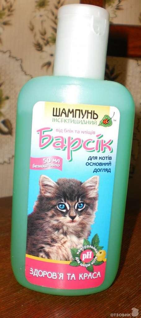 Шампуни от блох для кошек и собак: обзор популярных средств и инструкции по правильному применению — domovod.guru