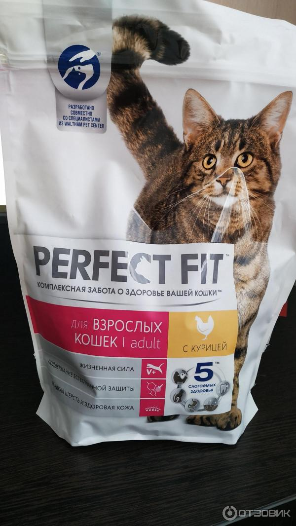 Самые качественные сухие корма для кошек 2021 года — рейтинг от ветеринаров