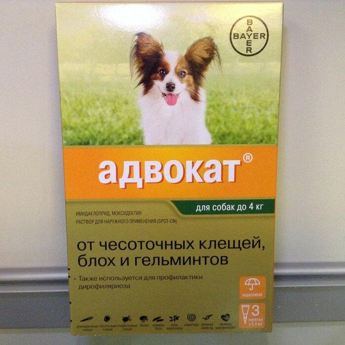 Advocate 250 – адвокат капли для собак весом от 10 до 25 кг против клещей, блох, вшей, власоедов и кишечных круглых червей 1 пипетка по 2,5 мл bayer