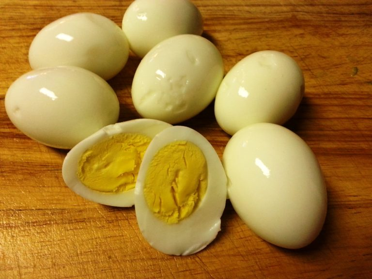 Можно ли давать собакам куриные и перепелиные яйца