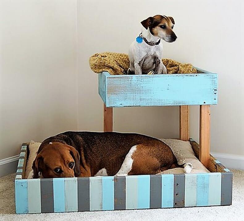 Как не подпускать собаку к мебели? как отучить собаку от мебели дивана кровати кресла? как отучить собаку спать и лежать на диване кровати мягкой мебели в отсутствие хозяев, дрессировка щенка и взросл