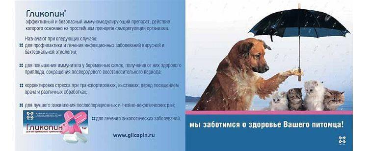 Инструкция по применению лекарственного препарата гликопин® 1 мг