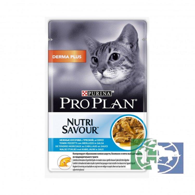 Хиллс, проплан, роял канин или пурина: какой корм лучше выбрать для кошки?