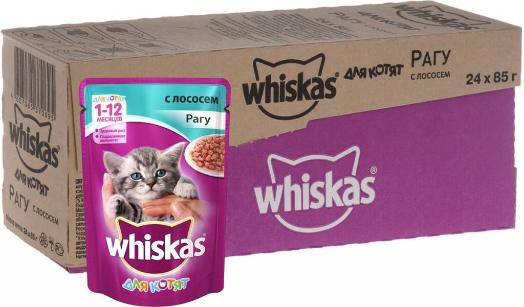 Влажный корм для кошек: обзор и отзывы ветеринаров