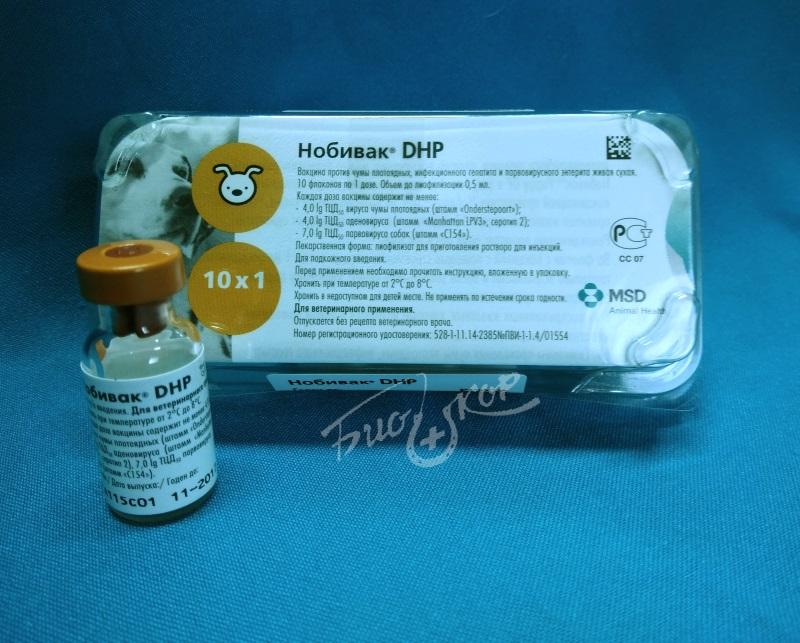 Вакцина каниген для собак