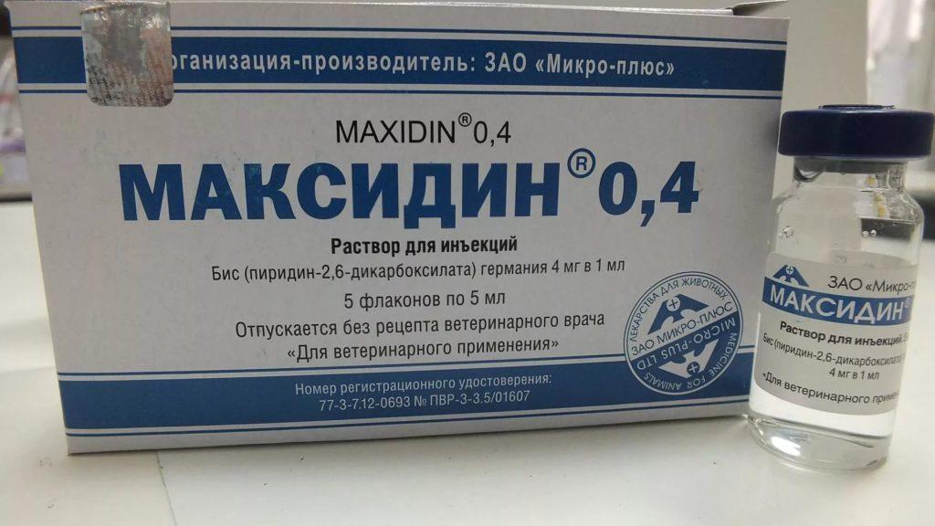Максидин: инструкция по применению, противопоказания, побочные