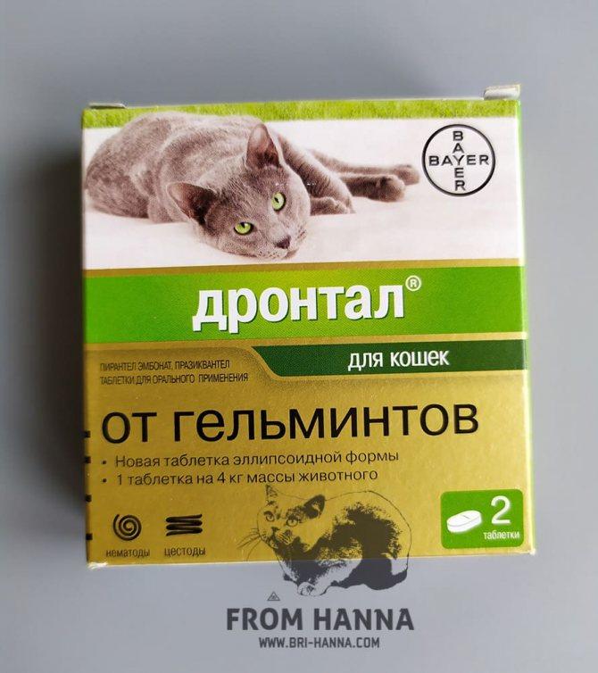 Дронтал плюс для собак: инструкция по применению, дозировка, отзывы - kupipet.ru