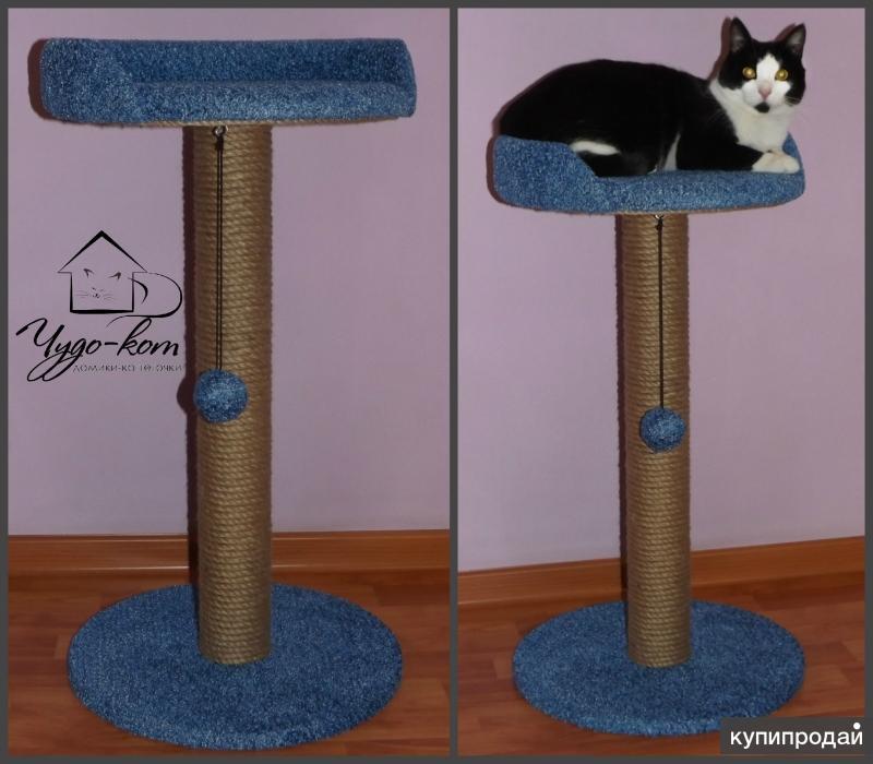 Домик для кошки своими руками: с когтеточкой, размеры чертежи