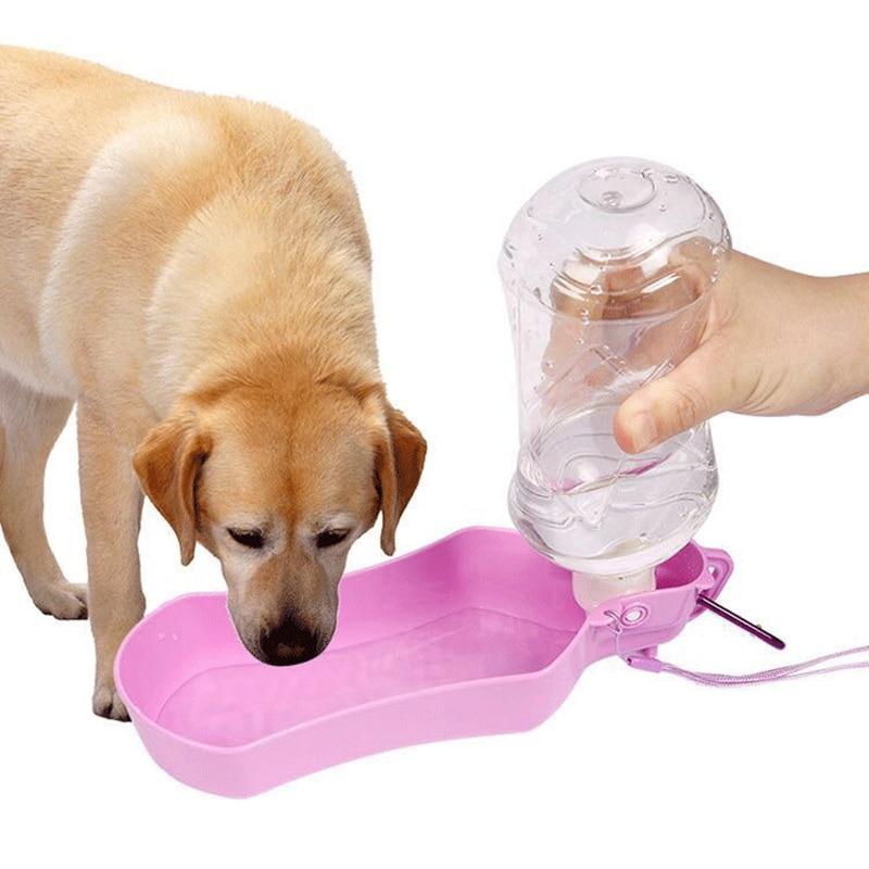 Какая поилка лучше для собак на улице - как поить собак | vetgroom