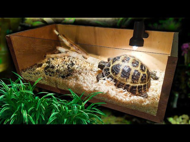 Островок или берег для водной черепахи - все о черепахах и для черепах. террариум или акватеррариум для черепахи