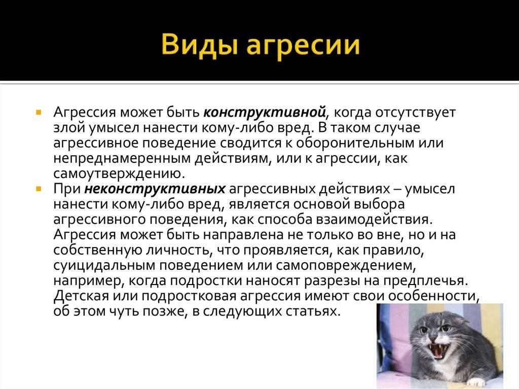 Агрессия у кошек. руководство по поведенческой  медицине собак и кошек
