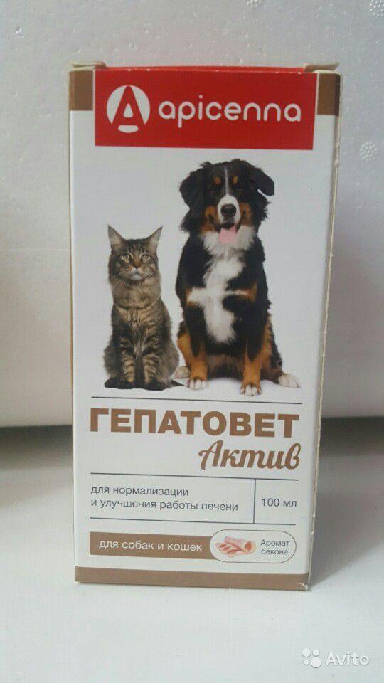 Гепатовет, суспензия для кошек и собак