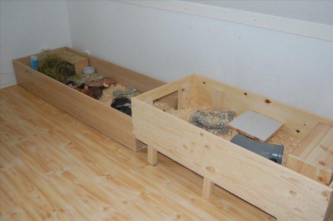 Клетка для морской свинки своими руками: как сделать вольер или загон, чертежи и схемы с фото, самодельная постройка из дерева в домашних условиях