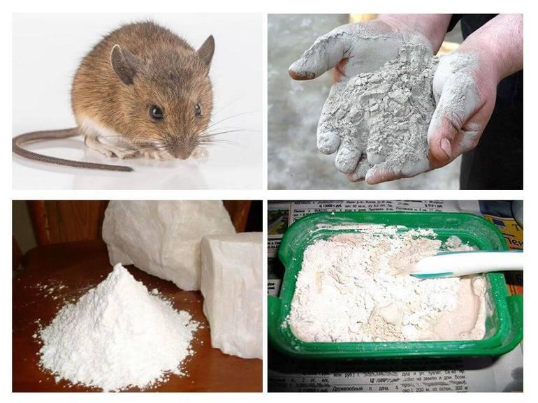 Наркотик соль: признаки и последствия употребления