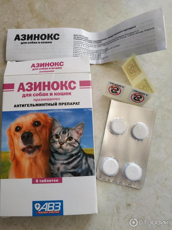 Дронтал плюс для собак, препарат против глистов
