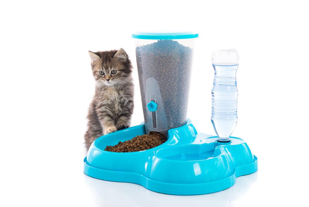 Автокормушка для кошек [10 лучших]: как выбрать, отзывы, цены