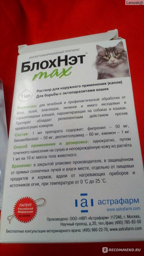 11 лучших капель от блох для кошек - рейтинговое агенство simplerule