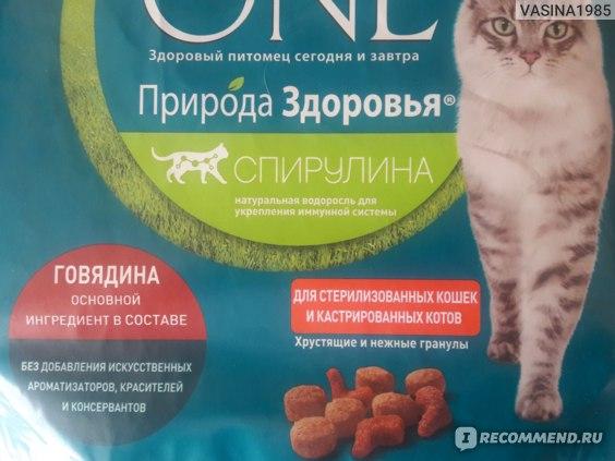 Классификация и обзор корма пурина для кошек, отзывы и рекомендации по выбору
