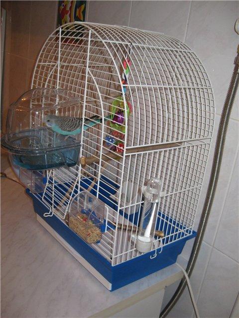 Изготовление клетки для попугая своими руками