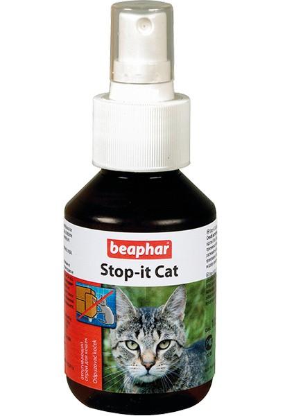 Какой запах не любят кошки: запахи отпугивающие кошек в саду и на дачном участке