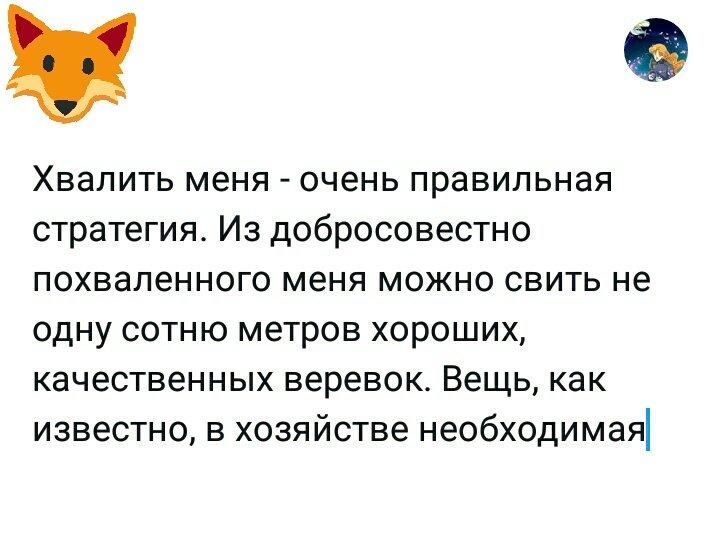 """Команда """"нельзя"""" для кошек: обучаем кошку новой команде"""