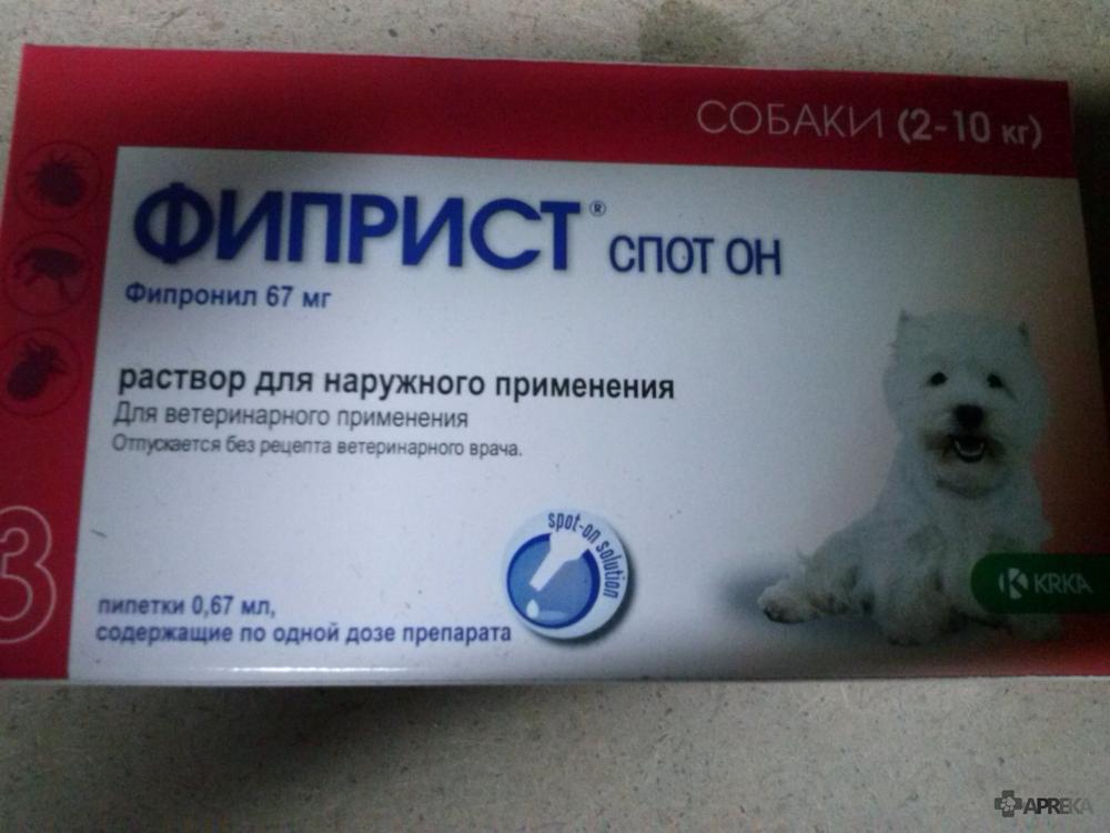 Фиприст для кошек: инструкция по применению, показания и противопоказания, аналоги, отзывы