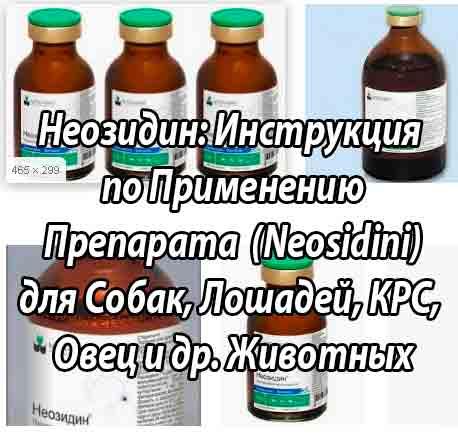 Неозидин м
