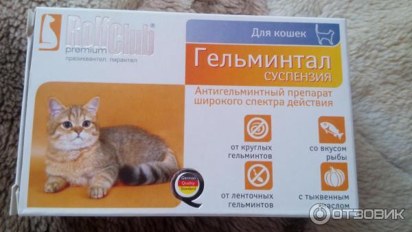 Глистогонное для кошек - обзор антигельминтных препаратов