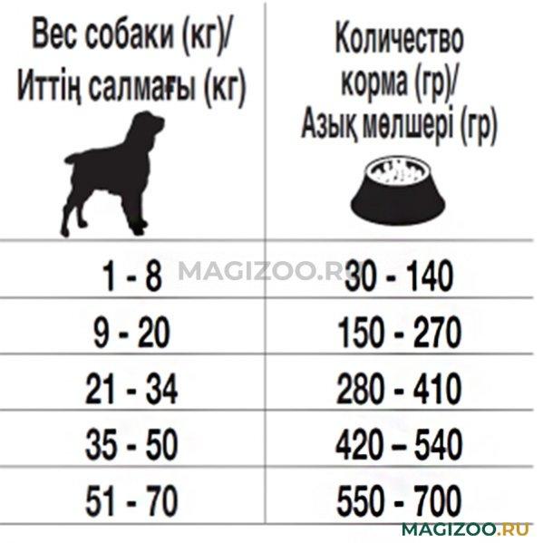 Вес и рост щенка немецкой овчарки по месяцам - таблица и фото с описанием этапов развития