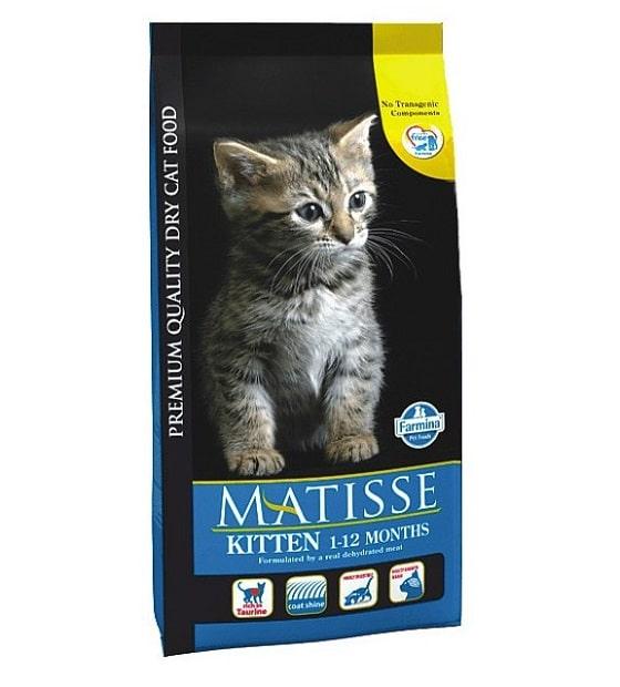 Самый лучший сухой корм для кошек: делаем осознанный выбор