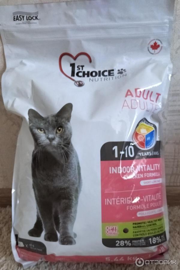 Корм чойс для кошек: плюсы, минусы и отзывы ветеринаров