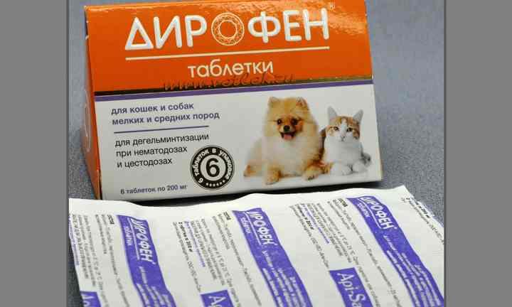 Преимущества препарата азинокс плюс для кошек и собак, инструкция по применению: высокая эффективность и надёжность, широкий спектр антигельминтного действия, удобство в применении благодаря приятному