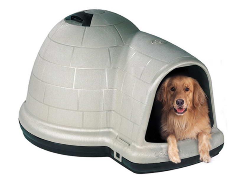 Домик для собаки своими руками: виды и нюансы изготовления