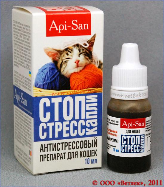 Успокоительные капли и таблетки для котят и взрослых кошек при стрессе и агрессии: какие средства можно дать животному?