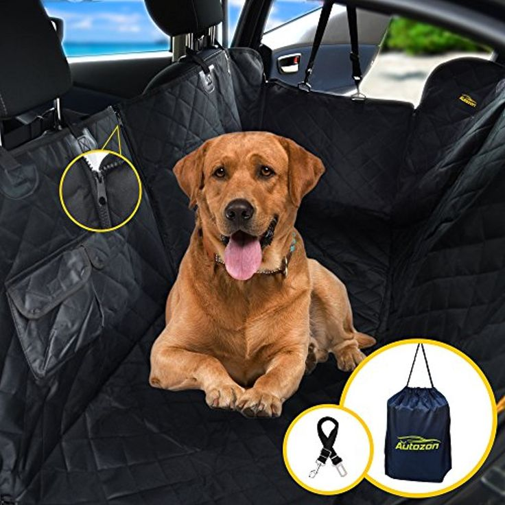 Выбор лучшего гамака для собак в автомобиль