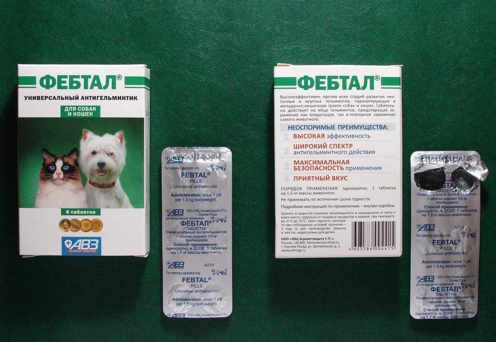 Азинокс плюс для собак – надежная защита от глистов