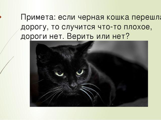 К чему чужая кошка пришла в дом? примета