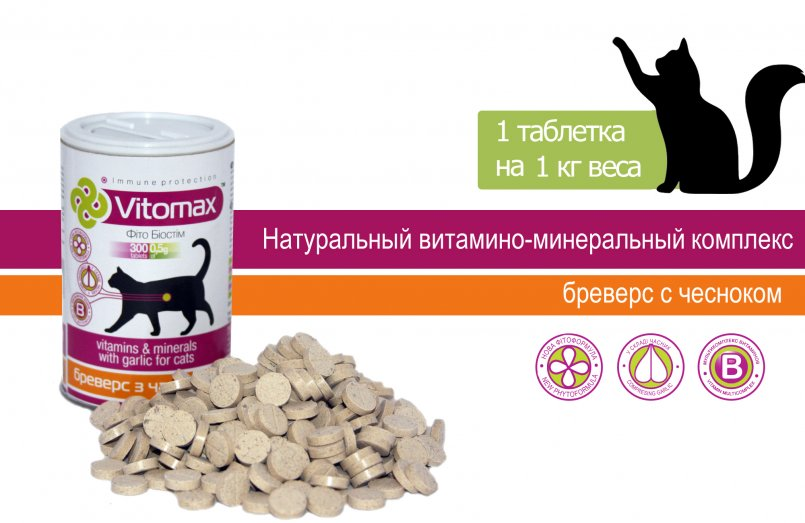 Авитаминоз у кошек - лечение, диагностика | ветклиника берлога