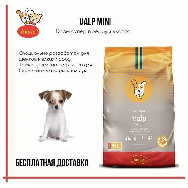 Рейтинг лучших сухих кормов для собак крупных и мелких пород 2019