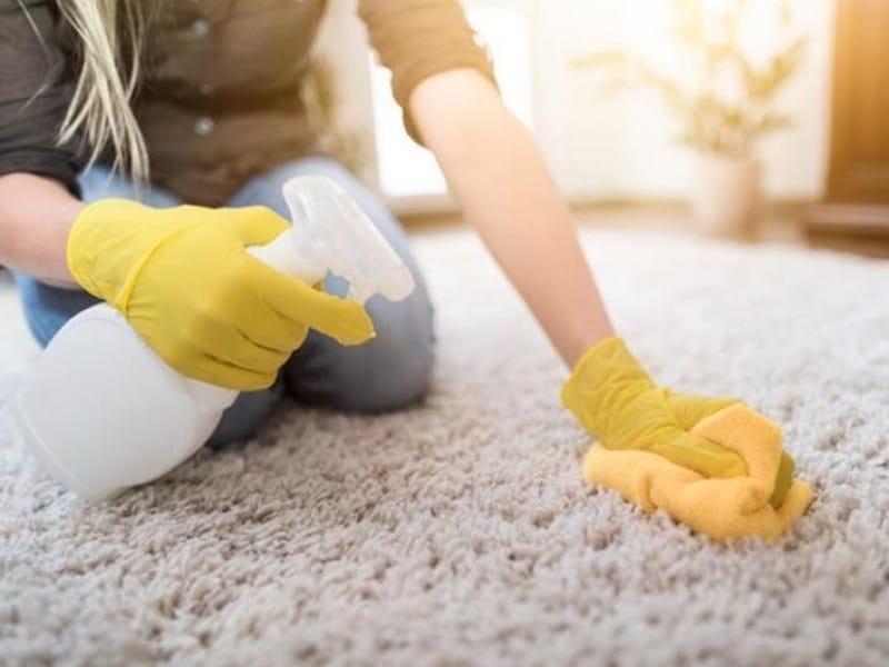 Чем вывести запах собачьей мочи в квартире: с ковра и дивана