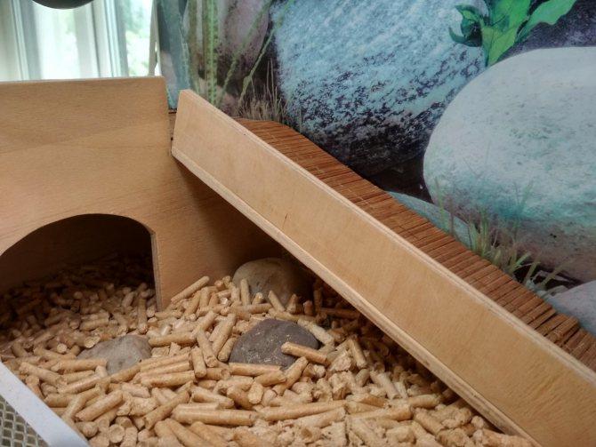Террариум для сухопутных черепах своими руками. пошаговая инструкция изготовления и приспособления аквариума для домашней черепашки