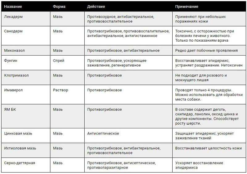 Клещ демодекс - причина демодекоза