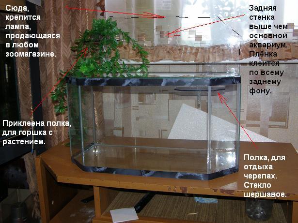 Водоросли и грунт для аквариума с красноухой черепахой