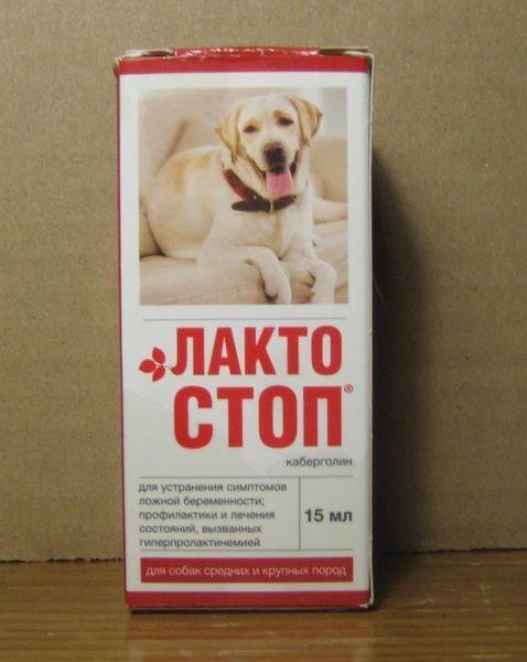 Лакто-стоп для собак: инструкция по применению, действующее вещество, схема лечения