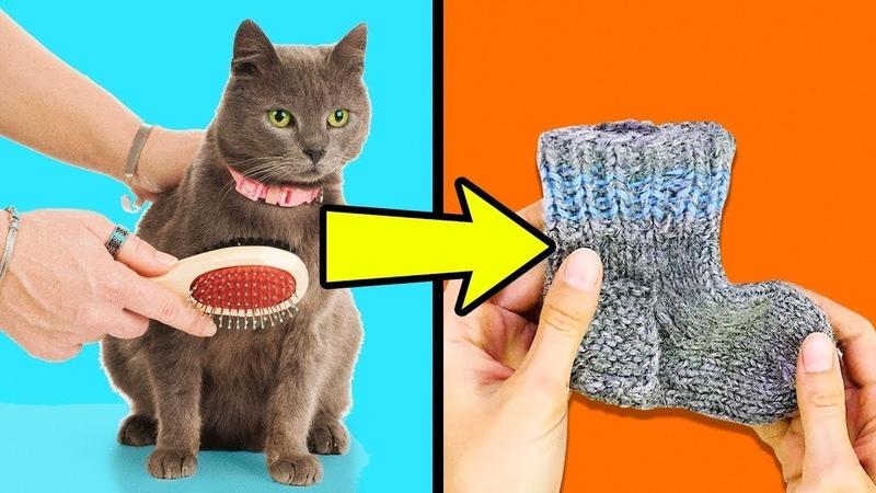 Интересные лайфхаки для кошек и котов: хитрости для кормления и ухода за питомцем, самодельные игрушки и прочие приспособления