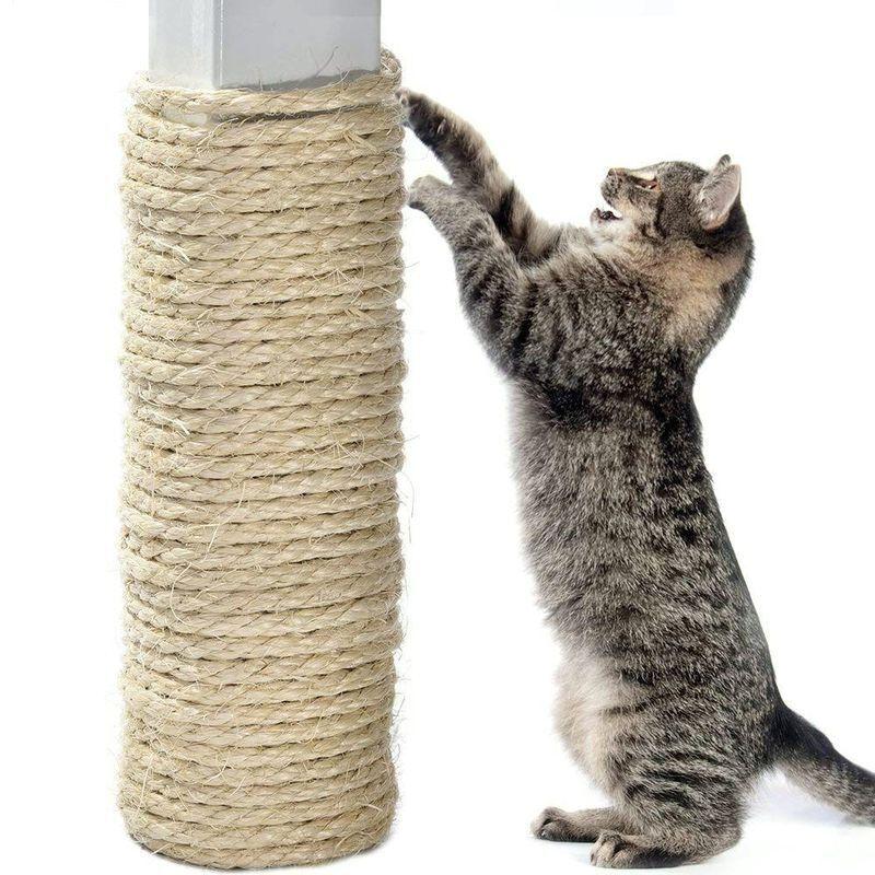 Как отучить кота драть обои, обдирать углы