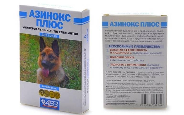Азинокс для кошек – инструкция по применению препарата