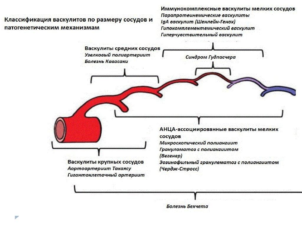 Паралич мимической мускулатуры лица – симптомы и лечение