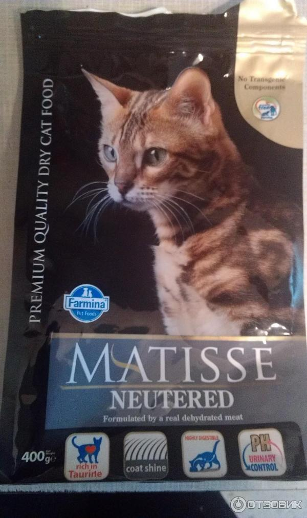 Корм для кошек matisse: отзывы, разбор состава, цена - kotiko.ru